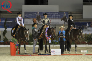 Western Riding Maturity Champion